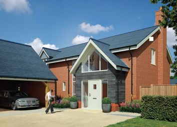 Thumbnail 4 bedroom detached house for sale in Endless Street, Salisbury, Wiltshire