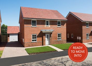 "Thumbnail 4 bed detached house for sale in ""Tamerton"" at Lukes Lane, Hebburn"
