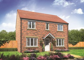 "Thumbnail 4 bed detached house for sale in ""The Chedworth"" at Castle Road, Cottingham"