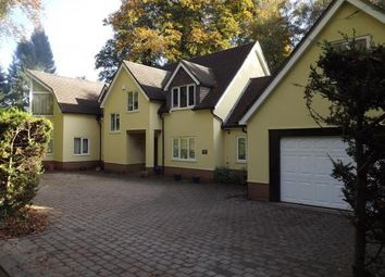 Thumbnail 4 bed detached house for sale in Avon Castle Drive, Ringwood