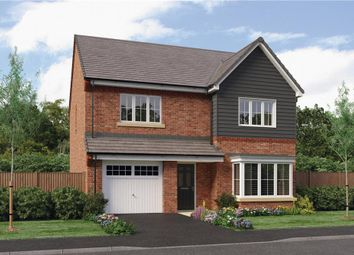 "Thumbnail 4 bedroom detached house for sale in ""Ryton"" at Hastings Close, Chesterfield"