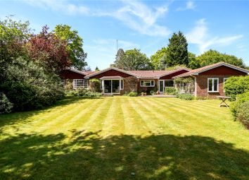 Thumbnail 4 bed detached bungalow for sale in South Road, Liphook, Hampshire