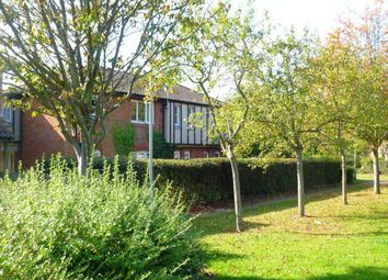 Thumbnail 2 bed flat to rent in Ploverly, Werrington, Peterborough