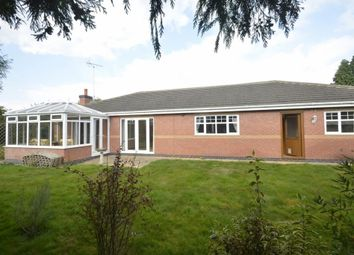 Thumbnail 4 bed detached bungalow to rent in Newby Close, Whetstone, Leicestershire