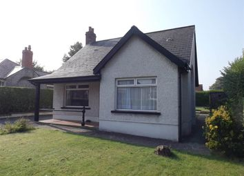 Thumbnail 3 bed terraced bungalow to rent in 11, Park Avenue, Holywood