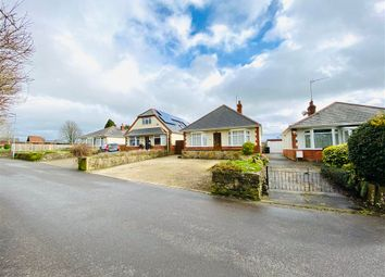 Thumbnail 4 bed bungalow for sale in Mampitts Road, Shaftesbury