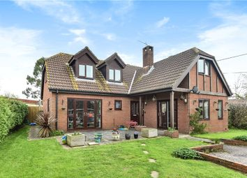 Thumbnail 4 bedroom detached house for sale in Willhay Lane, Axminster, Devon