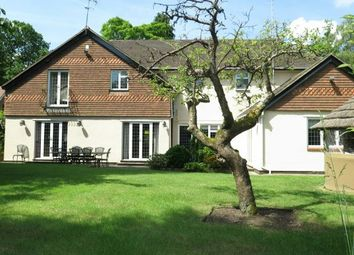 Thumbnail 5 bedroom detached house for sale in Rare Opportunity. Ravensdale Road, South Ascot