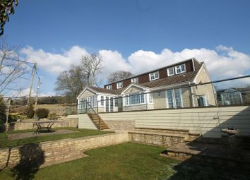 Thumbnail 4 bed detached house for sale in Kippax Avenue, Wells