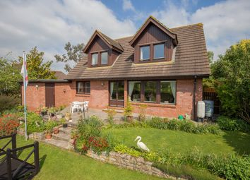 Thumbnail 3 bed detached house for sale in Ebford, Exeter, Devon