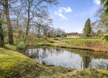 Thumbnail 5 bedroom detached house for sale in Walpole Close, Broome, Bungay, Norfolk