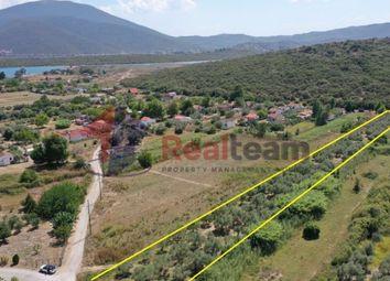 Thumbnail Land for sale in Agioi Apostoloi, Pteleos, Magnisia, Greece