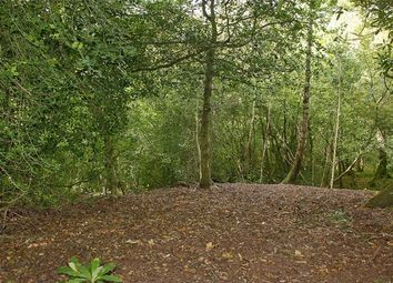 Thumbnail Land for sale in South Drive, Ossemsley, New Milton