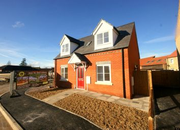 Thumbnail 2 bed detached house to rent in Belle Vue Close, Holbeach, Spalding