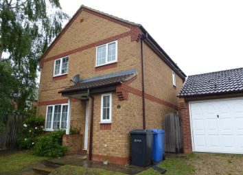 Thumbnail 3 bed detached house to rent in Buttercup Way, Norwich