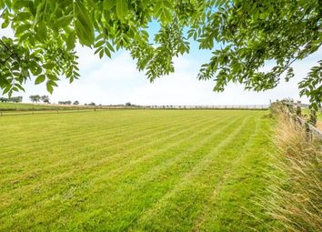 Thumbnail 4 bed semi-detached house for sale in East Somerton, Great Yarmouth, Norfolk