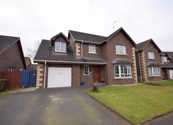 Thumbnail 4 bed detached house for sale in Ravenswood, Banbridge