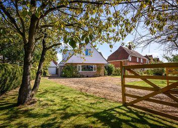 Thumbnail 4 bed detached house for sale in Church Road, Alpington, Norwich