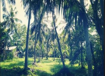Thumbnail Land for sale in Commercial Land Thay, Madanapola Via Maisiri 20032 North Western, Sri Lanka