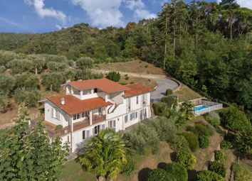 Thumbnail 5 bed villa for sale in Tcr-061 Villa Calipso, Camaiore, Lucca, Tuscany, Italy
