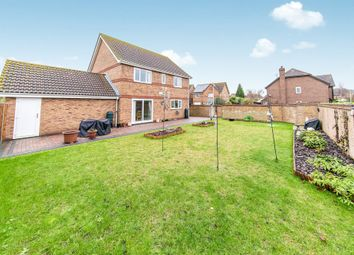 Thumbnail 4 Bed Detached House For Sale In Barbour Gardens Colchester