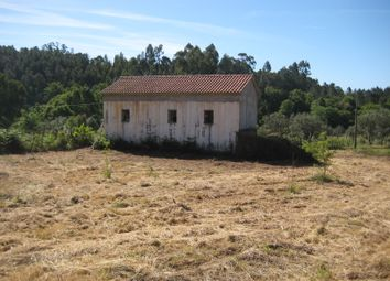 Thumbnail 1 bed cottage for sale in Póvoa Ribeira Cerdeira, Castelo, Sertã, Castelo Branco, Central Portugal