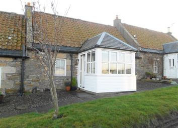 Thumbnail 2 bed terraced house to rent in St. Andrews