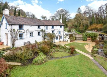 Thumbnail Detached house for sale in Branscombe, Seaton, Devon