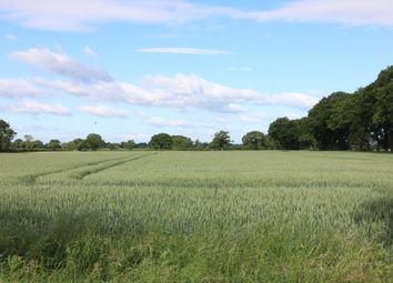 Thumbnail Land for sale in York Road, Easingwold, York