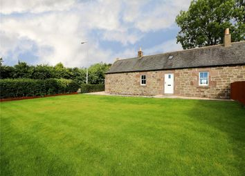Thumbnail 2 bedroom semi-detached house to rent in Grange Road, Monifieth, Angus