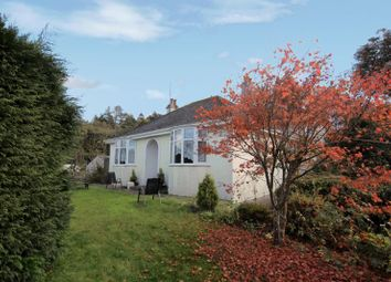 Thumbnail 3 bed bungalow for sale in Harrowbeer Lane, Yelverton