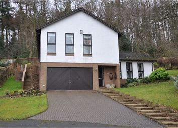 Thumbnail 4 bed detached house for sale in Hackwood Park, Hexham, Northumberland.