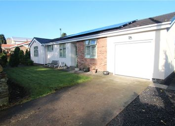 Thumbnail 3 bed detached bungalow to rent in The Rosses, Front Street, Esh