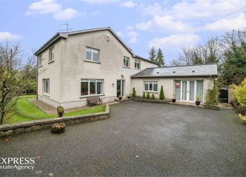 Thumbnail 5 bed detached house for sale in Junction Road, Mullybreslen, Irvinestown, Enniskillen, County Fermanagh