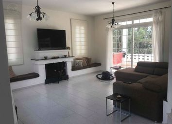 Thumbnail Detached house for sale in Tala, Cyprus