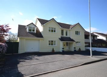 Thumbnail 4 bed detached house for sale in Old St. Clears Road, Johnstown, Carmarthen