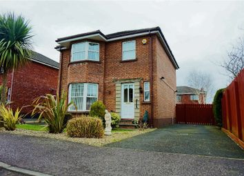 Thumbnail 3 bed detached house for sale in Walnut Avenue, Larne