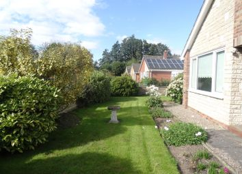 Thumbnail 2 bedroom detached bungalow to rent in Brook Drive, Wem, Shrewsbury