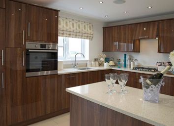 """Thumbnail 4 bed detached house for sale in """"The Monro - Plot 115 Includes Appliances And Turf To Rear"""" at Red Deer Road, Cambuslang, Glasgow"""