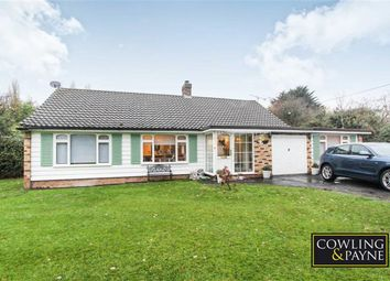 Thumbnail 3 bedroom detached bungalow to rent in Glebe Road, Ramsden Bellhouse, Essex