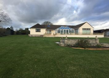 Thumbnail 5 bed detached bungalow to rent in Pedwell Hill, Ashcott