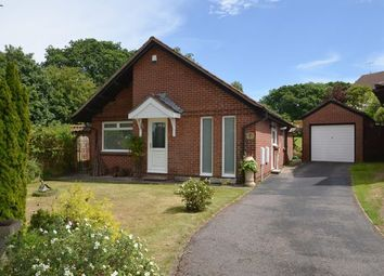 Thumbnail 3 bed detached bungalow for sale in Ferndale Close, Honiton