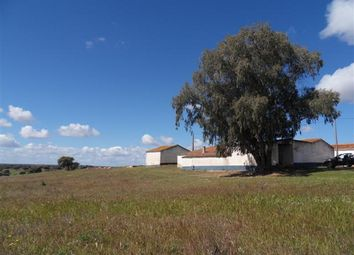 Thumbnail Farm for sale in Albernoa E Trindade Parish, Albernoa E Trindade, Beja (City), Beja, Alentejo, Portugal