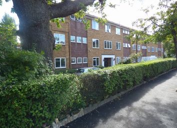 Thumbnail Studio to rent in Westmount Court, Corringway, Ealing