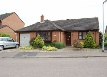Thumbnail 3 bed detached bungalow to rent in Bramley Close, Ledbury, Herefordshire