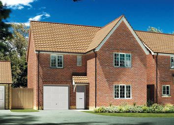 """Thumbnail 4 bedroom detached house for sale in """"The Newbury """" at Carsons Drive, Great Cornard, Sudbury"""