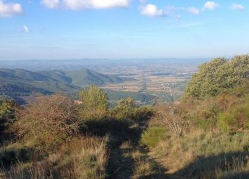 Thumbnail Land for sale in Dancialena Montanare, Cortona, Tuscany