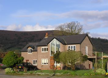 Thumbnail 3 bed detached house for sale in Llanvihangel Crucorney, Llanvihangel Crucorney, Abergavenny