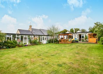Thumbnail 3 bed detached bungalow for sale in Warboys Road, Bury, Huntingdon