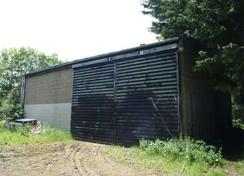 Thumbnail Detached house for sale in Bythorn, Huntingdon